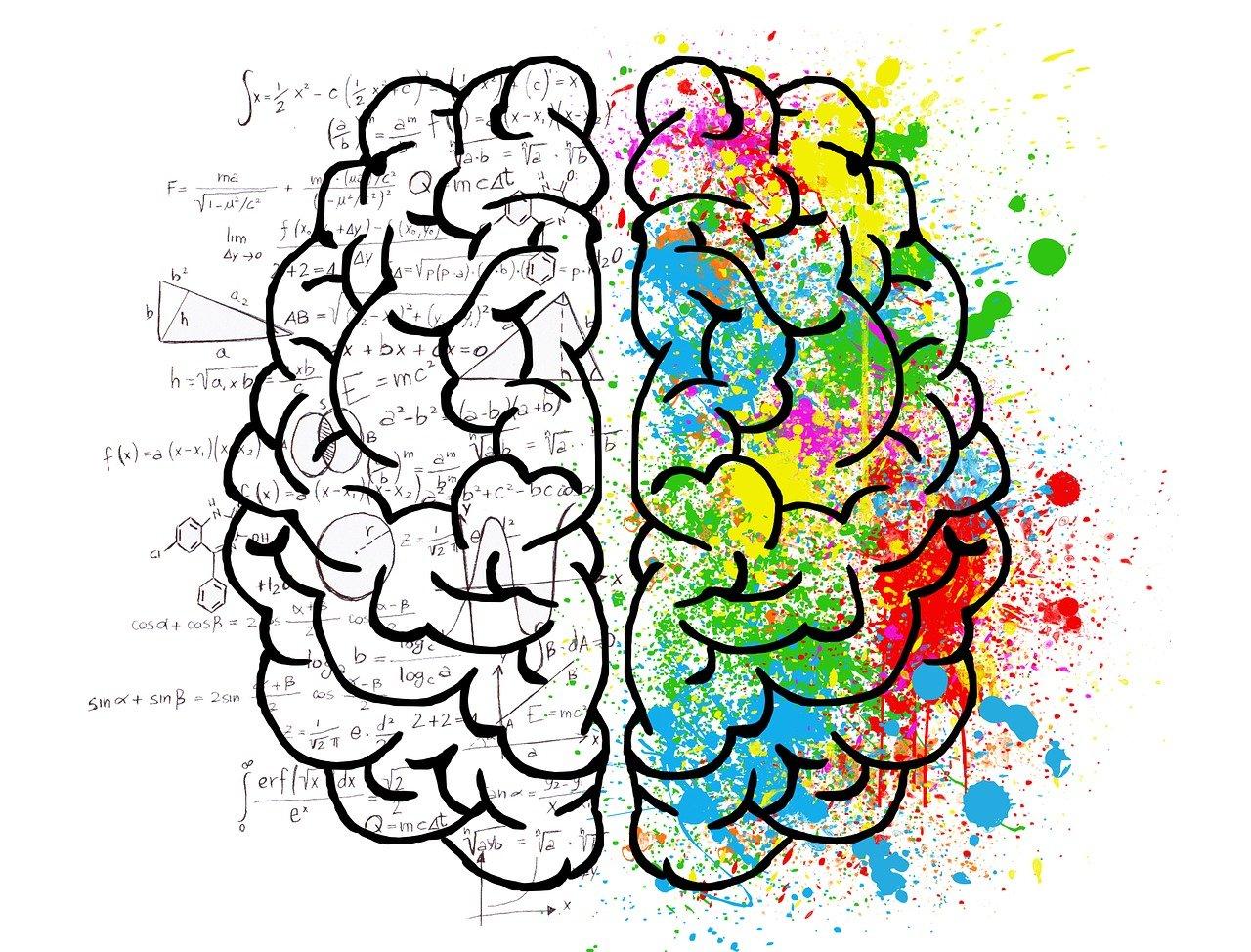 brain, mind, psychology-2062057.jpg